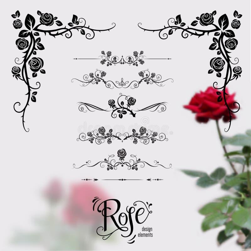 Róża projekta elementy ilustracji
