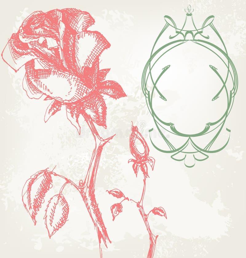 róża rocznik ilustracja wektor