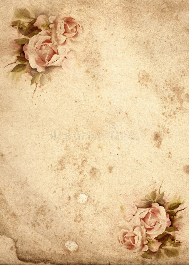 Róża rocznika tło ilustracji