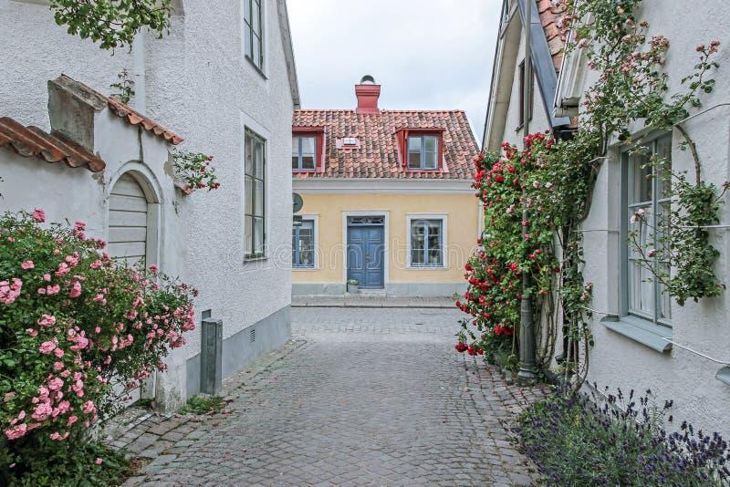 Różana aleja w visby Sweden obraz royalty free