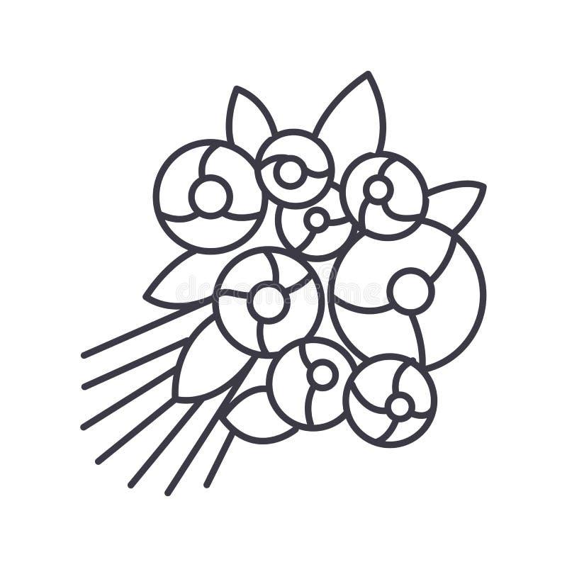 Różana bukieta wektoru linii ikona, znak, ilustracja na tle, editable uderzenia royalty ilustracja