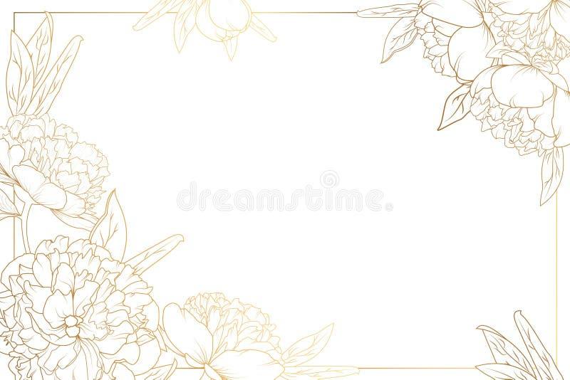 Różana peoni granicy rama dekorująca osacza złotego ilustracji