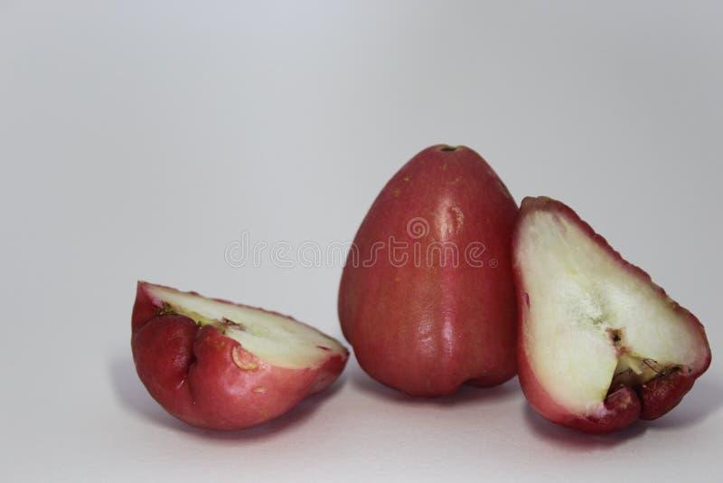 Różani jabłka obraz royalty free
