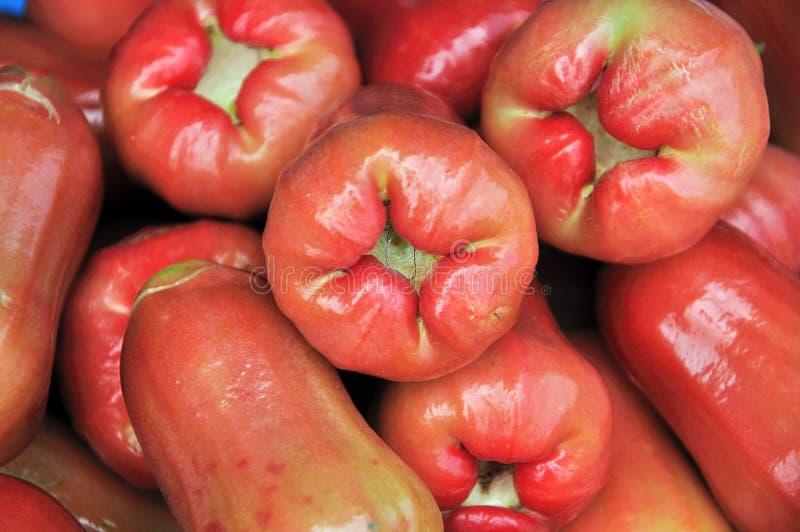 Różani jabłka obraz stock
