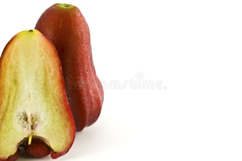 Różani jabłka lub chomphu odizolowywający fotografia royalty free