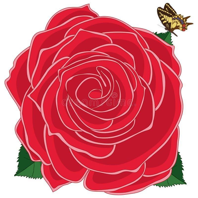 Różany czerwony motyl royalty ilustracja