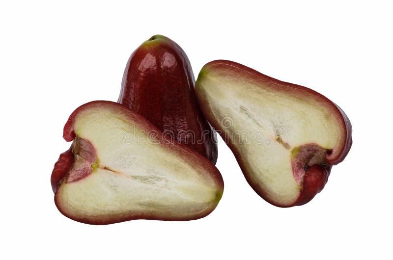 Różany jabłko odizolowywający obrazy royalty free