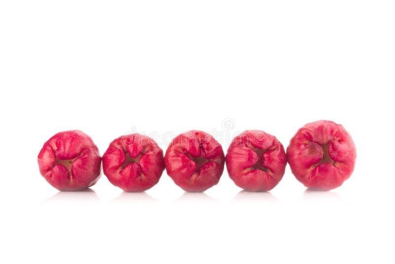 Różany jabłko odizolowywający na białym tle zdjęcie stock