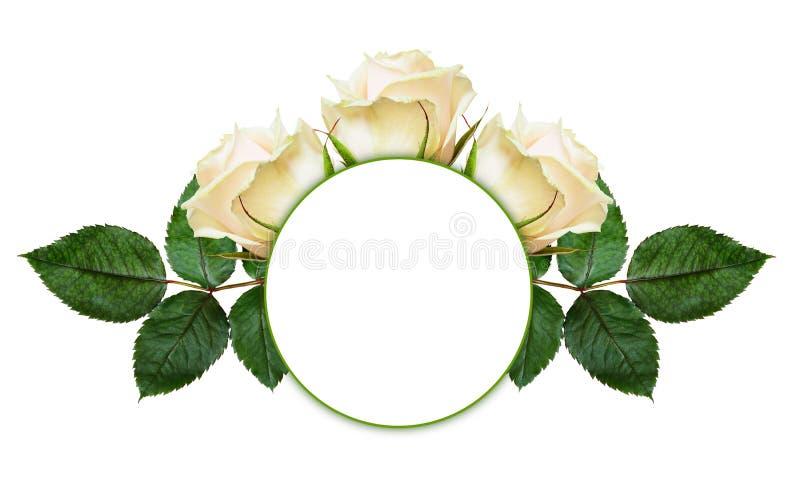 Różany kwiatu przygotowania, rama i obraz stock