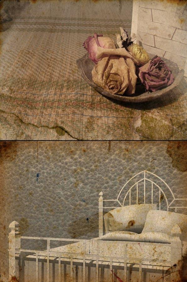 róże łóżkowe fotografia royalty free