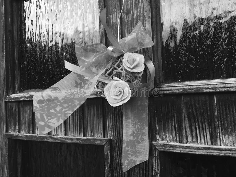 róże zdjęcia stock