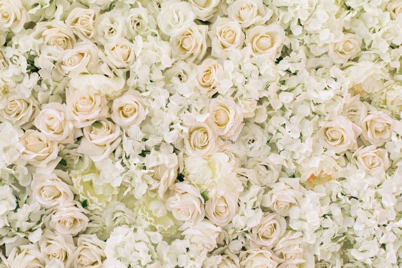 Róże, hortensja, peonie kwitną jako tło zdjęcie royalty free