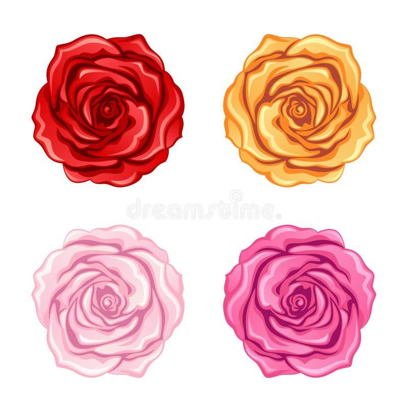 róże ustawiają ilustracja wektor