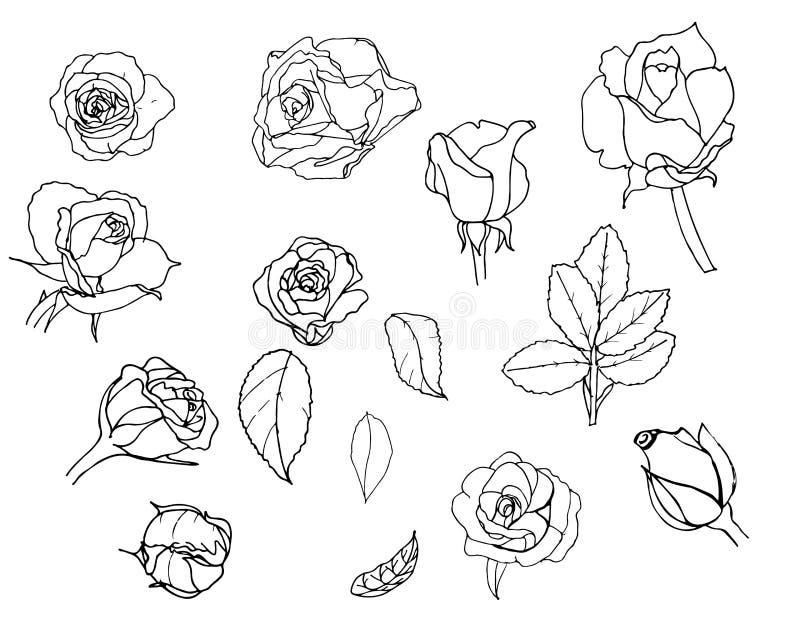 róże ustawiają nakreślenie ilustracja wektor
