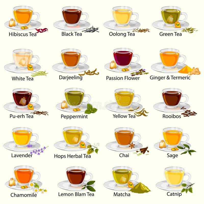 Różna rozmaitość ziołowa i lecznicza herbata ilustracji
