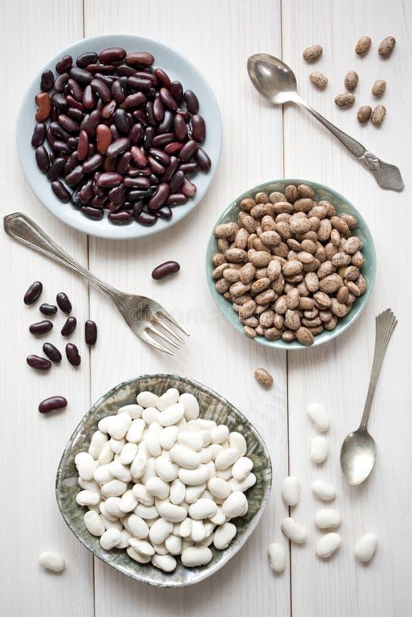 Różne bobowe rozmaitość Bielu, czerwieni i brązu fasole na talerzach na białym drewnianym stole, zdjęcia stock