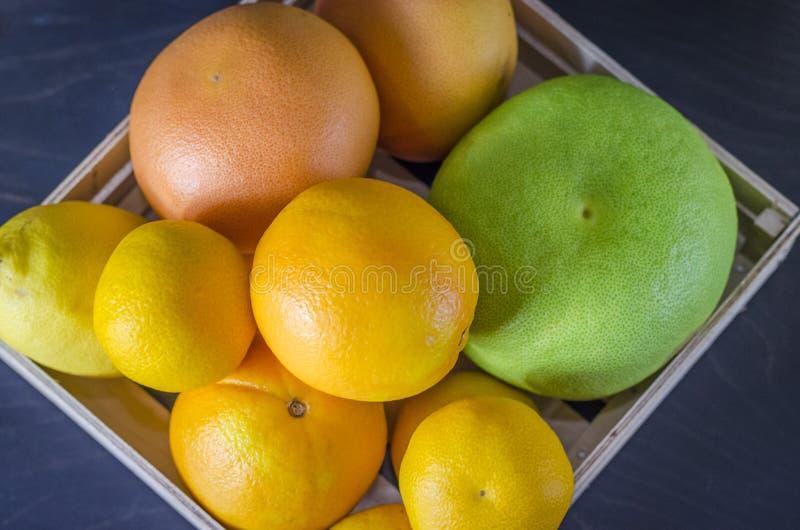 różne cytrus owoc w pudełku fotografia royalty free