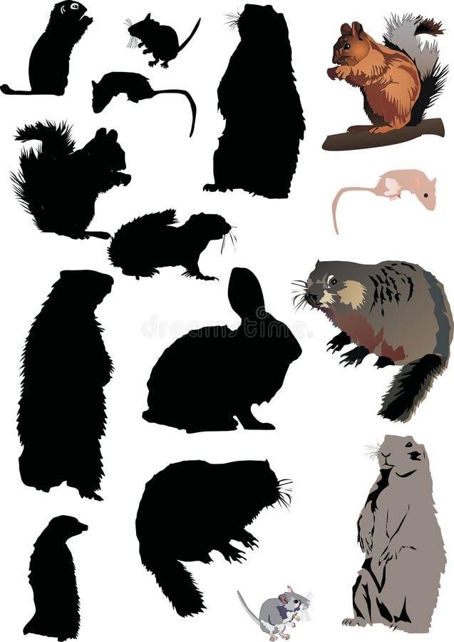 różne gryzonie ilustracji