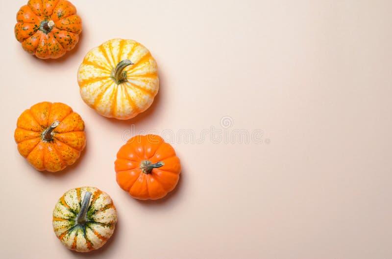Różne Kolorowe banie, jesieni dziękczynienie i Halloween tło, zdjęcia royalty free