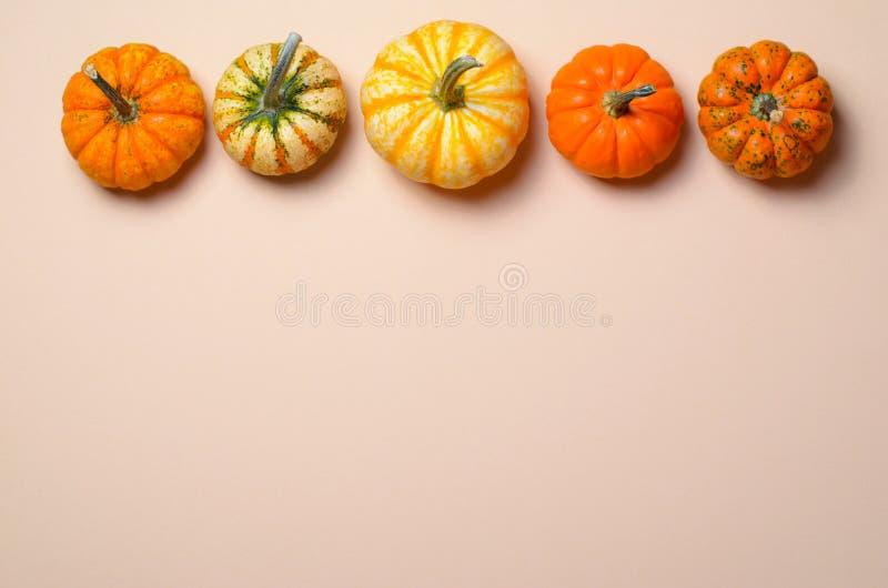 Różne Kolorowe banie, jesieni dziękczynienie i Halloween tło, zdjęcie stock