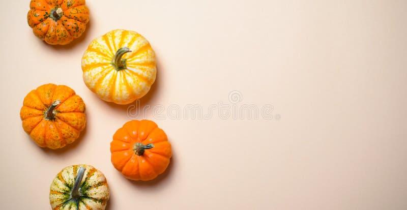 Różne Kolorowe banie, jesieni dziękczynienie i Halloween tło, obrazy royalty free