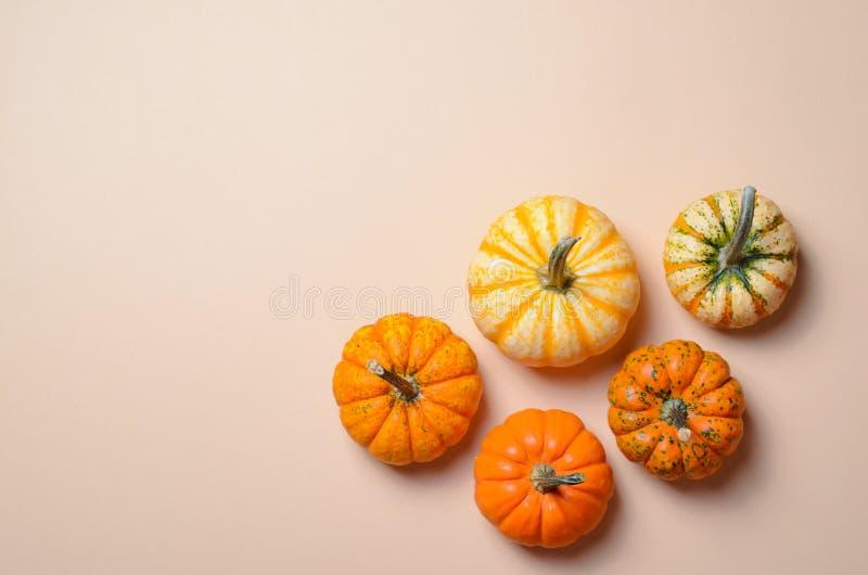 Różne Kolorowe banie, jesieni dziękczynienie i Halloween tło, fotografia royalty free