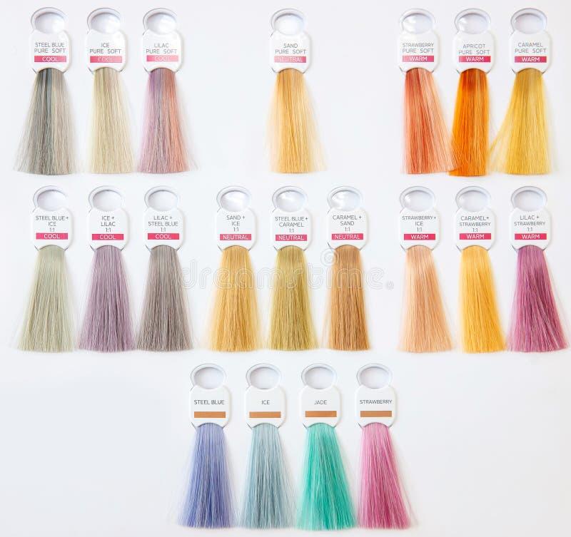 Różne kolory farbowane na palecie włosów Odcienie peruki do włosów ustawione dla przemysłu piękności obrazy royalty free