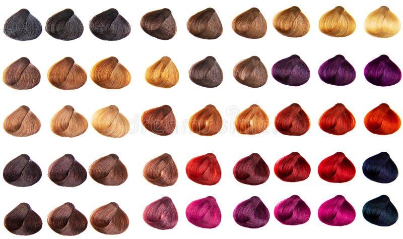 Różne kolory farbowane na palecie włosów Odcienie peruki do włosów ustawione dla przemysłu piękności Izolowane tło zdjęcia royalty free
