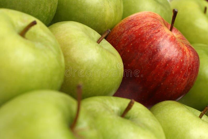 różne pojęcia jabłek fotografia stock