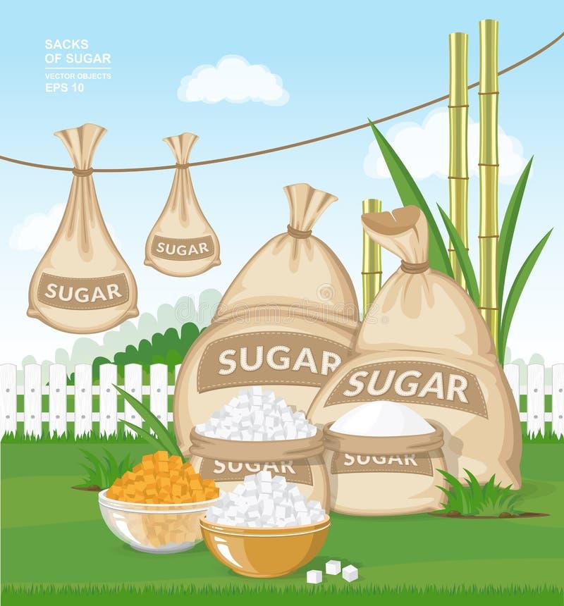 Różni burlap worki cukier w ogródzie Białego i brown cukieru sześciany w pucharach na świeżej zielonej trawie ilustracja wektor