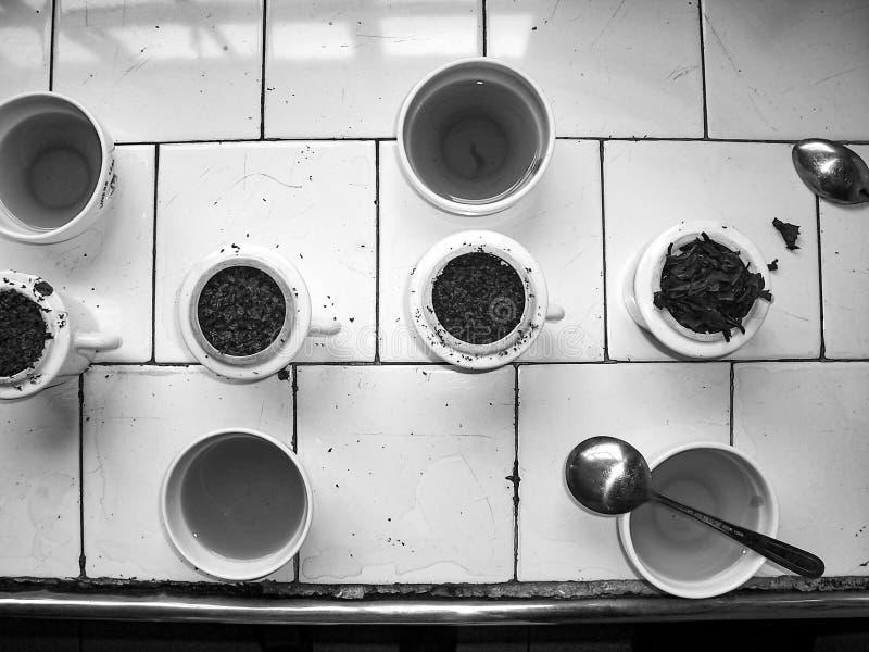 Różni herbata trakeny dla kosztować zdjęcie royalty free