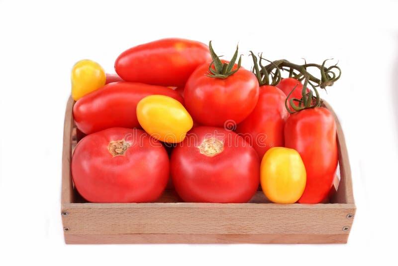 Różni kolory i wielkościowi pomidory w drewnianym pudełku fotografia royalty free