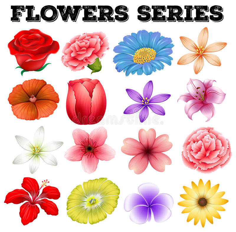 Różni kwiaty jakby ilustracja wektor