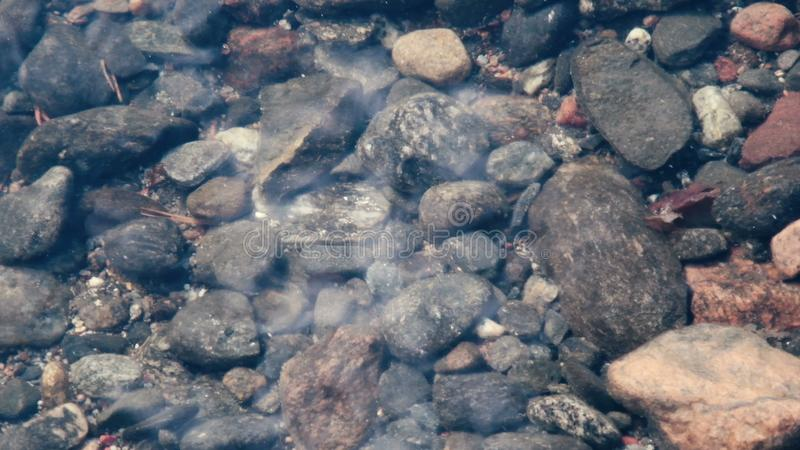 Różni otoczaków kamienie w jasnej wodzie Lahti region, Finlandia Zamyka w górę materiału filmowego obrazy stock