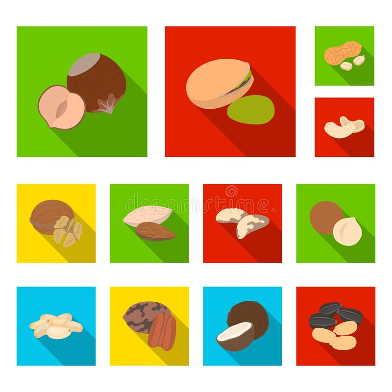 Różni rodzaje dokrętek płaskie ikony w ustalonej kolekci dla projekta Dokrętka symbolu zapasu sieci Karmowa wektorowa ilustracja ilustracji