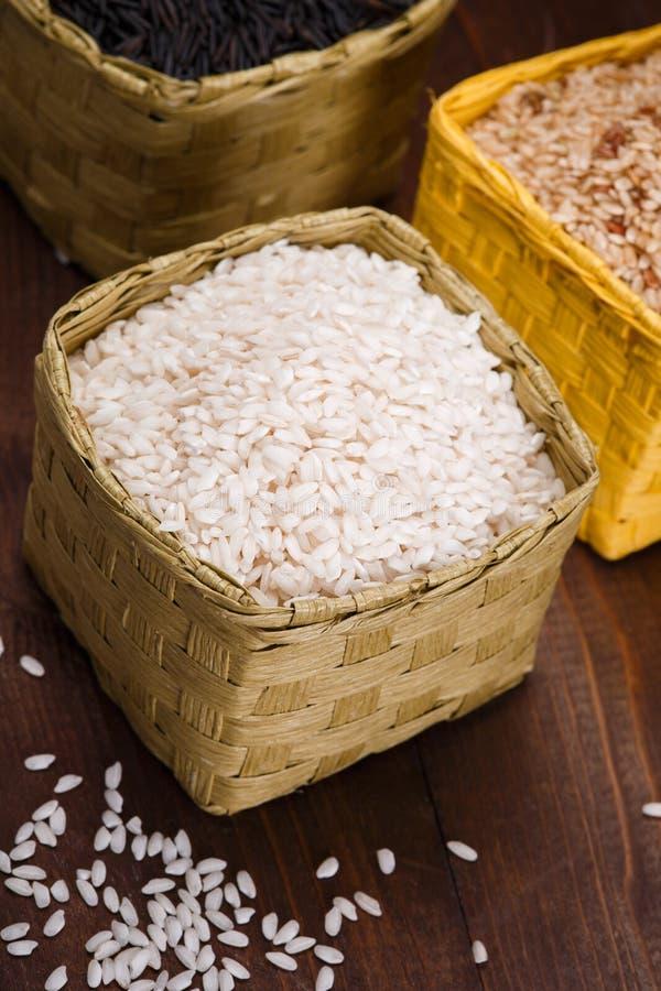 Różni ryż obraz royalty free