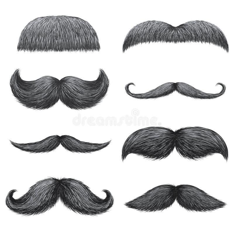 Różni style męscy realistyczni wąsy ustawiający Szewron, Dal, anglicy, handlebar, imperiał, abażurek, malarza muśnięcie royalty ilustracja