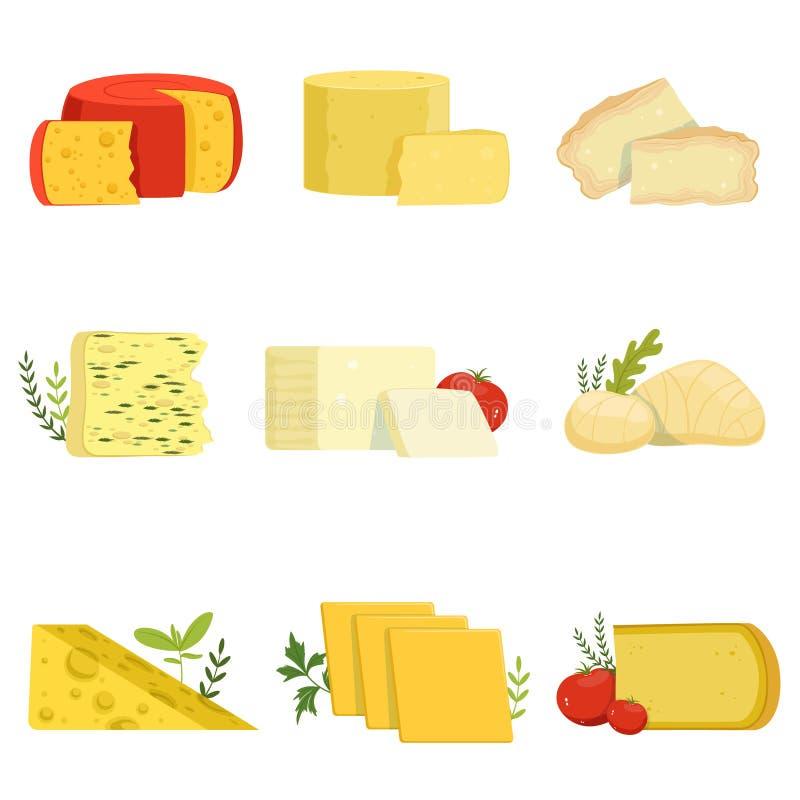 Różni typ serowi kawałki, popularne serowe wektorowe ilustracje jakby royalty ilustracja