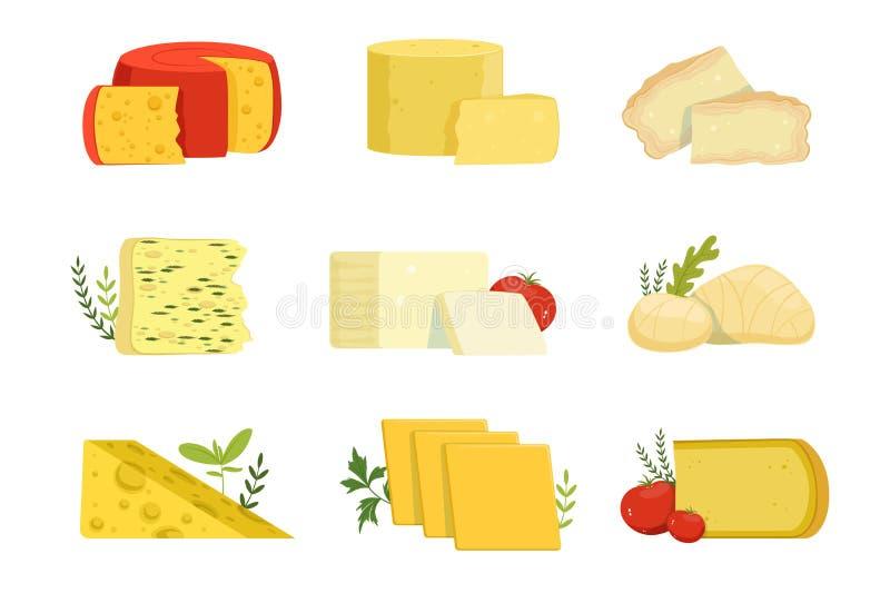 Różni typ serowi kawałki, popularne serowe wektorowe ilustracje jakby ilustracji