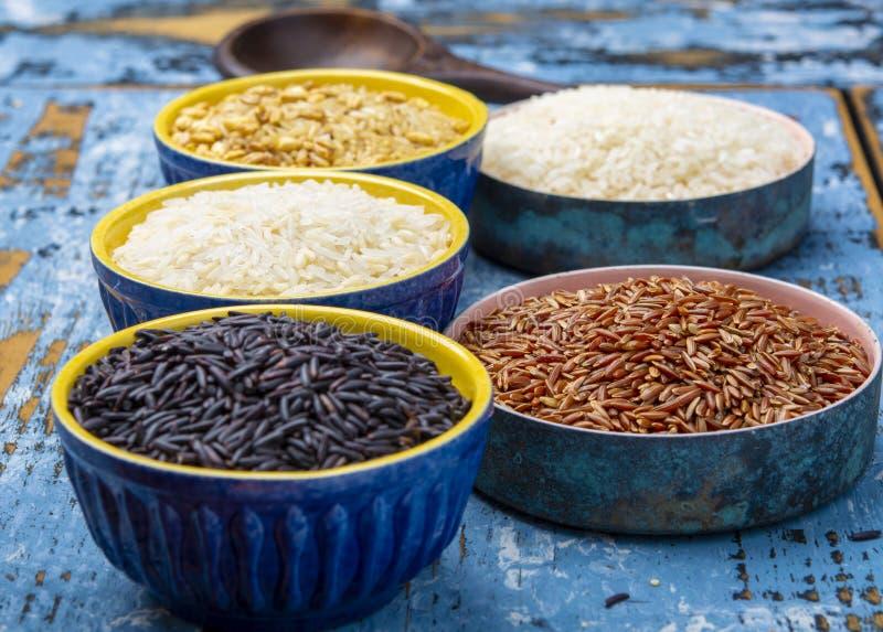 Różni typy ryż, basmati, jaśminowy, biali, arborio, brąz i czerń, obraz stock