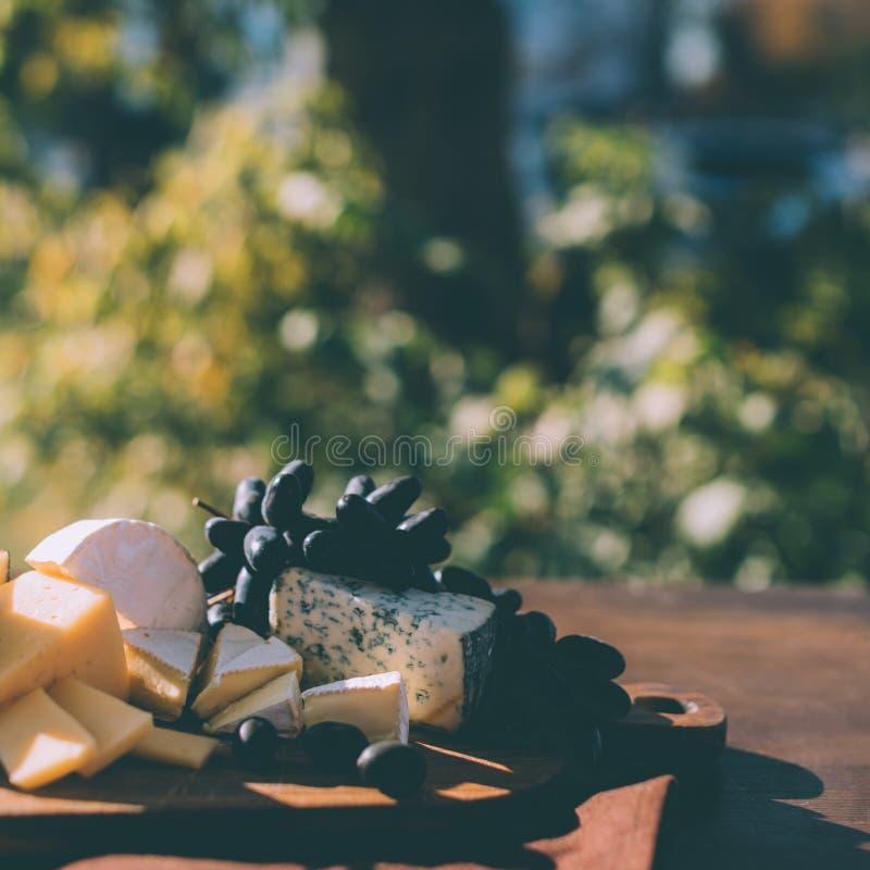 Różnica ser i winogrona zdjęcia stock