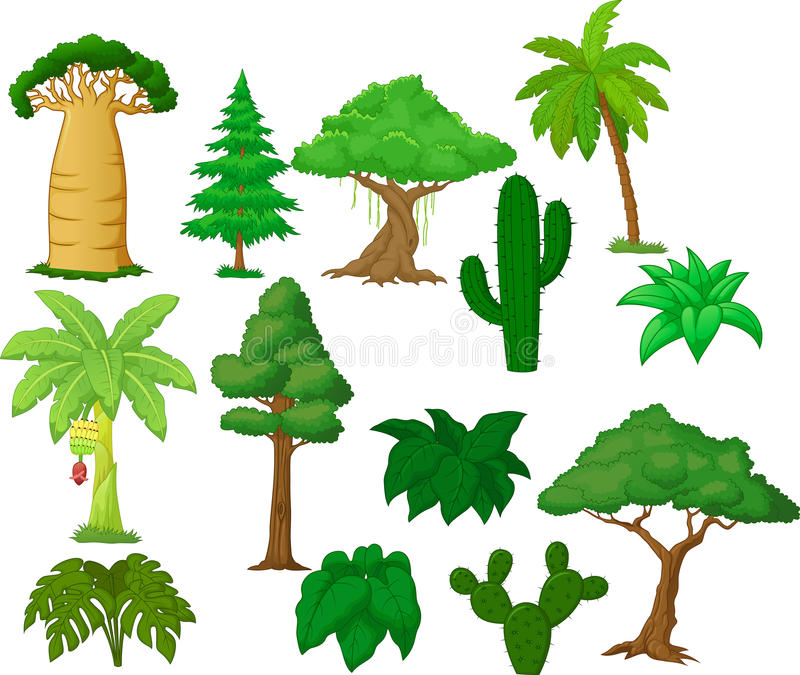 Różnorodna drzewna kolekcja ilustracji
