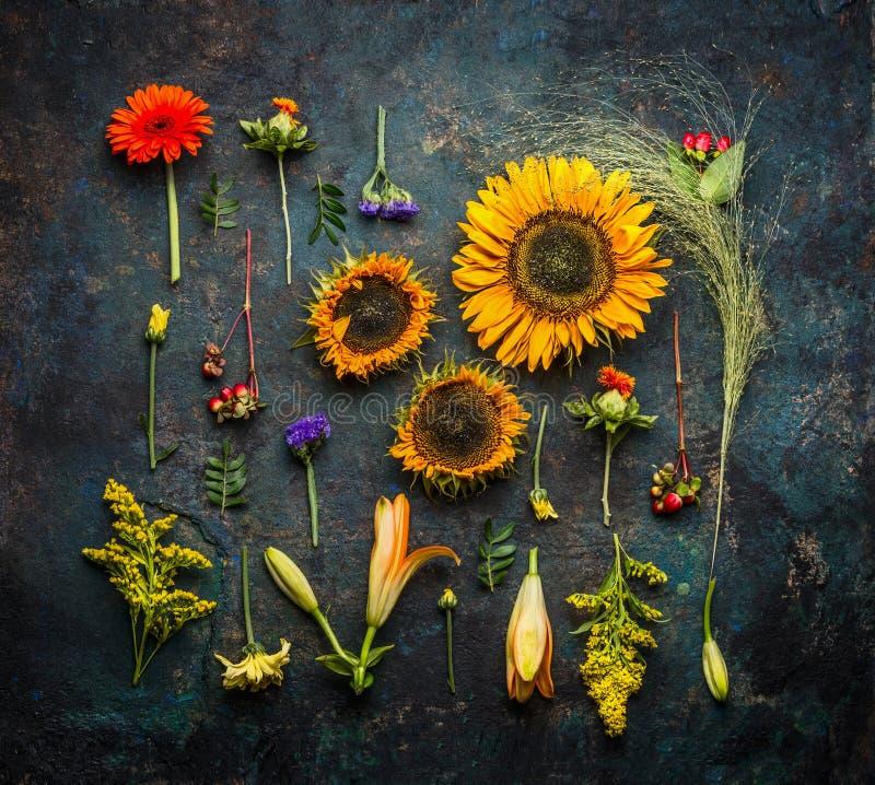 Różnorodna jesieni roślina, kwiaty na ciemnym rocznika tle i, odgórny widok zdjęcia stock