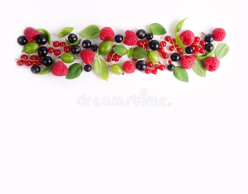 Różnorodne świeże lato jagody Malinki, agresty, rodzynki i zielenie, fotografia stock
