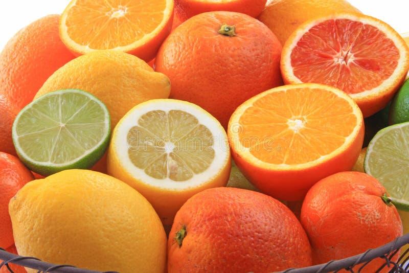 różnorodne cytrus owoc obrazy stock