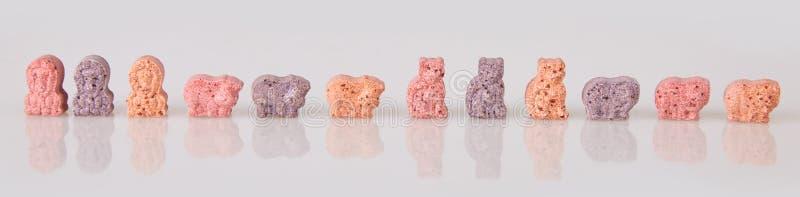 Różnorodne witaminy dla dzieciaków na białym tle obraz stock