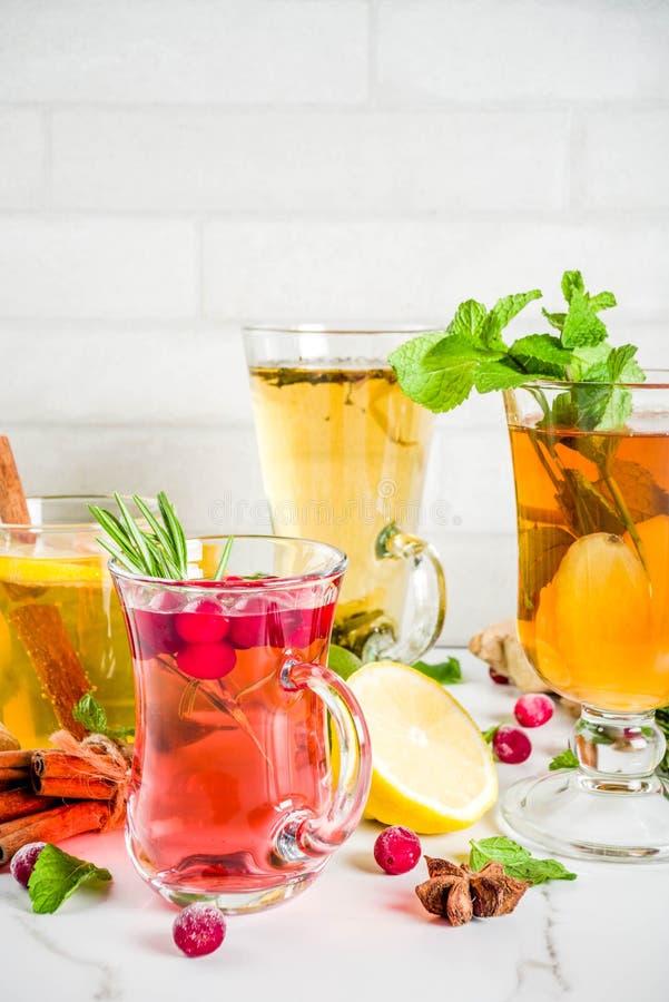 Różnorodnej jesieni zimy ziołowa herbata fotografia stock