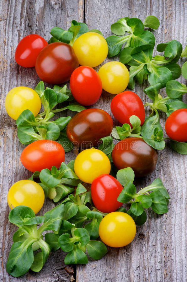 Różnorodni Czereśniowi pomidory zdjęcia royalty free