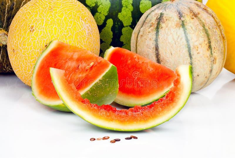 Różnorodni melony i kawałki zdjęcie royalty free
