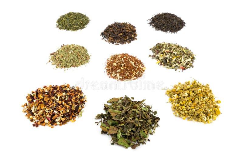 Różnorodni rozsypiska i smaki herbata obrazy royalty free